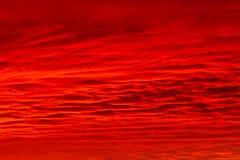 Roter Himmel Lizenzfreie Stockfotos