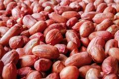 Roter Hintergrund der Erdnuss- Beschaffenheit stockfotografie