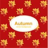 Roter Hintergrund des Herbstes mit Blättern und Beeren lizenzfreie abbildung