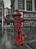 Roter Hydrant Lizenzfreies Stockbild