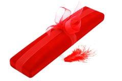 Roter Kasten und eine Feder Lizenzfreies Stockfoto
