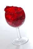 Roter Kirschgelatinenachtisch lizenzfreies stockfoto