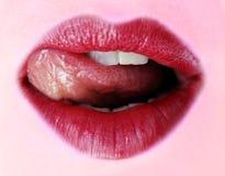 Roter Lippenstift Lizenzfreies Stockfoto