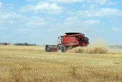 Roter Mähdrescher schneidet Weizen Lizenzfreie Stockfotografie