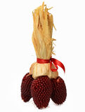 Roter Mais-Blumenstrauß Lizenzfreies Stockfoto