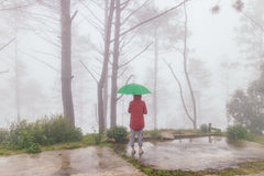 Roter Mantel der Frauenabnutzung öffnete grünen Regenschirm sich drehen zurück mit Nebel Stockfotos