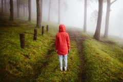 Roter Mantel der Frauenabnutzung drehen sich zurück auf Wegweise mit Nebel Lizenzfreie Stockfotos