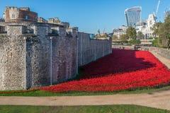 Roter Mohnblumen Tower von London Stockbilder