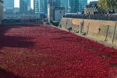 Roter Mohnblumen Tower von London Lizenzfreie Stockbilder