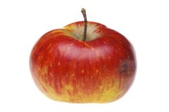Roter nasser Apfel Lizenzfreie Stockfotos