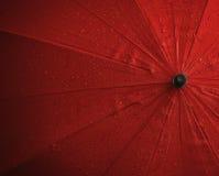 Roter nasser Regenschirm stockfotos