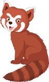 Roter Panda der Karikatur Lizenzfreies Stockfoto