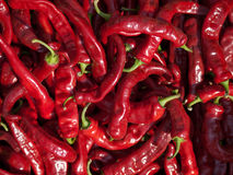 Roter Paprika Stockbild