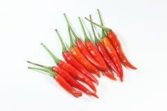 Roter Paprika Lizenzfreie Stockbilder