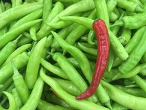 Roter Paprika auf Gruppen des Paprikas im Markt stockbild