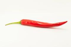 Roter Paprika auf weißem Hintergrund Lizenzfreies Stockfoto