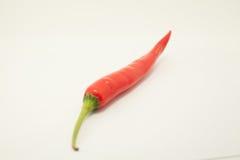 Roter Paprika auf weißem Hintergrund Stockbild