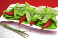 Roter Paprika mit Oregano stockfoto