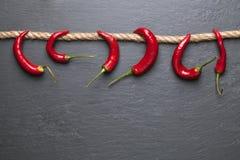 Roter Paprika-Pfeffer Stockbild
