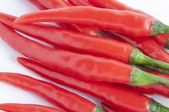 Roter Paprika-Pfeffer Lizenzfreies Stockfoto