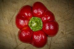Roter Pfeffer Stockbild