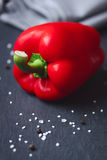 Roter Pfeffer mit Salz und Pfeffer Lizenzfreies Stockfoto