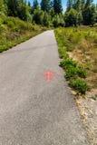Roter Pfeil auf Gehweg Lizenzfreie Stockfotografie