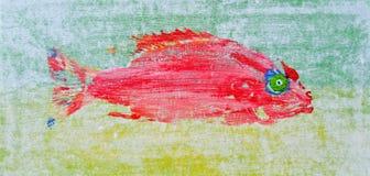 Roter Quakfisch stockbilder