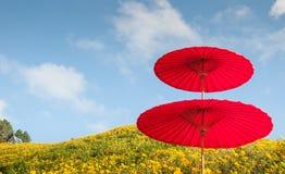 Roter Regenschirm auf dem Berg Stockfoto