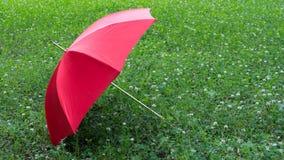 Roter Regenschirm auf dem grünen Hintergrund Lizenzfreies Stockfoto