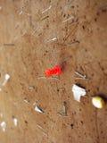 Roter Reißnagel und Staples auf Bulleting-Brett Stockfotografie