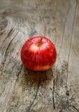 Roter reifer Apfel Lizenzfreie Stockfotografie