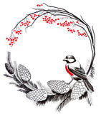 Roter Robin Bird vektor abbildung