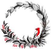 Roter Rotkehlchenvogel, der auf einem heiligen Baum sitzt vektor abbildung