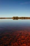 Roter, ruhiger See und entfernter Wald Stockfotografie