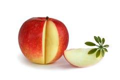 Roter saftiger Apfel Lizenzfreie Stockbilder