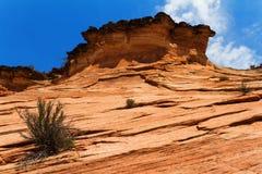 Roter Sandstein, Utah Stockfotografie