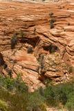 Roter Sandstein, Utah Lizenzfreies Stockfoto