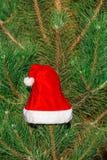 Roter Santa Claus-Hut auf Tannenzweig im Winter parken draußen Stockfoto