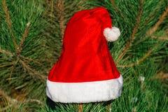 Roter Santa Claus-Hut auf Tannenzweig im Winter parken draußen Stockfotografie