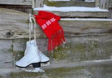 Roter Schal mit Eisrochen stockbilder