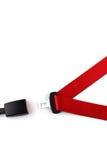 Roter Sicherheitsgurt mit einem Verbindungselement und der Verriegelung Stockfotos