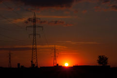roter Sonnenuntergang über Strommasten und einem Baum Stockbild