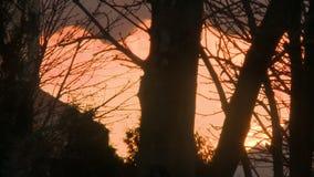 Roter Sonnenuntergang und Wolken, die über die Stadtansicht schwimmen stock video footage