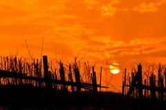 Roter Sonnenuntergang unter einem Zaun hergestellt Lizenzfreie Stockfotografie