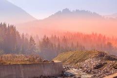 Roter Sonnenuntergangwald der mysteriösen nebelhaften Kiefers stockfoto