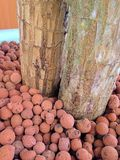 Roter Stein Stockfoto