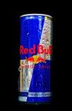Roter Stier Stockfoto