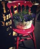 Roter Stuhl Stockbild