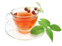Roter Tee mit Himbeere Stockfoto
